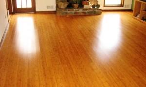 Bamboo_Flooring
